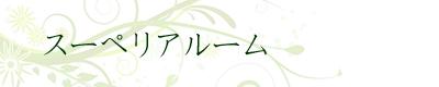 sur_b.jpg